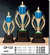 107_CP121