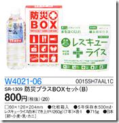W4021-06