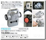 P30-01